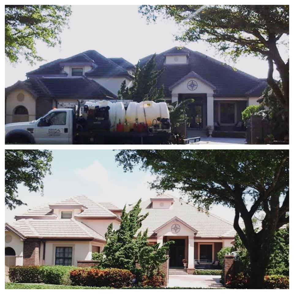 Roof Cleaned by Allied Roof Cleaning