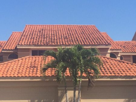 Splash proof Roof Tile sealing, Roof Cleaning, Roof Cleaning Company, Roof Cleaning Service, Roof Cleaning Company, Naples Roof Cleaning, Cape Coral Roof Cleaning, Estero Roof Cleaning, Fort Myers Roof Cleaning, Bonita Springs Roof Cleaning, Fort Myers Pressure Washing, Naples Pressure Cleaning, Bonita Springs Pressure Cleaners, Cape Coral Pressure Cleaners, Fort Myers Paver Cleaning and Sealing, Naples Paver Cleaning and Sealing, Spanish Roof Tile Cleaning, Roof Cleaning Company, Tile Roof Cleaning Company, Tile Roof Cleaning Service, Tile Roof Cleaning Company, Naples Tile Roof Cleaning, Cape Coral Tile Roof Cleaning, Estero Tile Roof Cleaning, Fort Myers Tile Roof Cleaning, Bonita Springs Tile Roof Cleaning